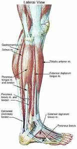 Is leg pain a symptom of Parkinson's?
